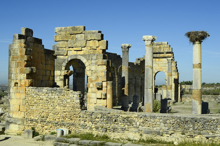 volubilis: Morocco, site of ancient Roman settlement Volubilis aka Walili