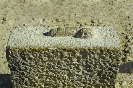 ancient roman: Morocco, Unesco world heritage site of ancient Roman settlement Volubilis aka Walili - penis as way sign to ancient house of pleasure