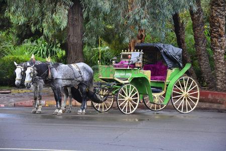 horse drawn: Morocco, horse drawn coach - tourist attraction in Marrakesh Editorial