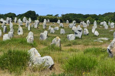France, menhires in Unesco world heritage site Carnac 版權商用圖片 - 43548844