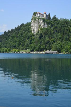 grad: Slovenia, castle Bled aka Blejski Grad and Bled lake aka Blejsko Jezero Editorial