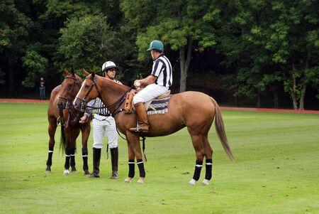 arbitros: Ebreichsdorf, Austria - Septiembre 10mo 2010: árbitros no identificados y caballos por torneo de polo