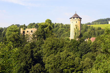 upper austria: Austria, ruin Wildberg in Upper Austria near Linz