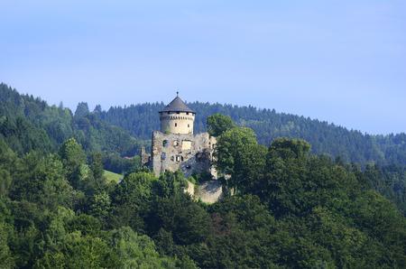 ruin: Austria, ruin Wildberg