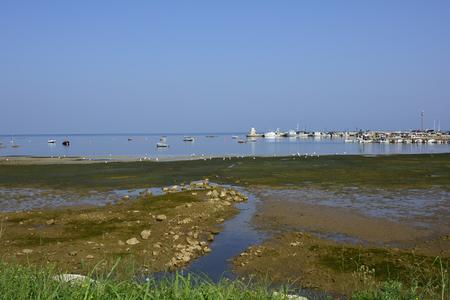 fishing village: Croatia, harbor of tiny fishing village Savudrija