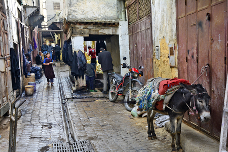fes: Fes, Morocco - November 20th 2014: Unidentified people in the part of the dyers and donkey laden with different goods in souk Fes el-Bali