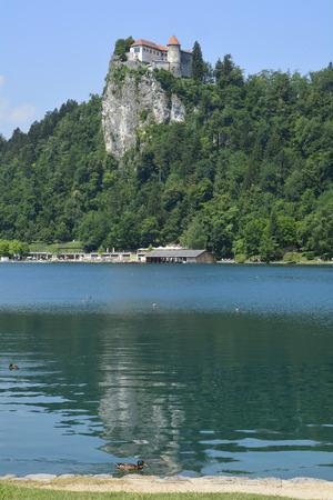 grad: Slovenia, castle Bled aka Blejski Grad