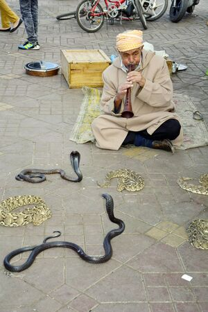 charmer: Marrakesh, Morocco - November 22nd 2014: Unidentified snake charmer and snakes on place Djemaa el-Fna - a Unesco world heritage site