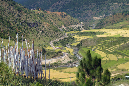 Bhutan, prayer flags, rice fields and road between Punakha and Wangdi