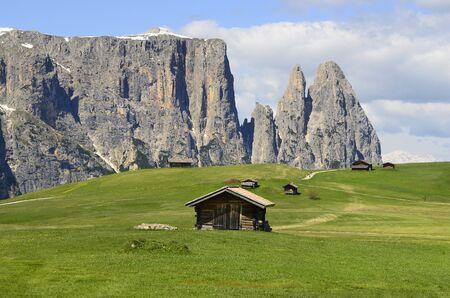 di: Italy, South Tyrol, Alpe di Siusi, Stock Photo