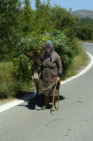 laden: Mochos, Greece - May 23rd 2014: Unidentified friendly old woman on road with her donkey fully laden with greens Editorial
