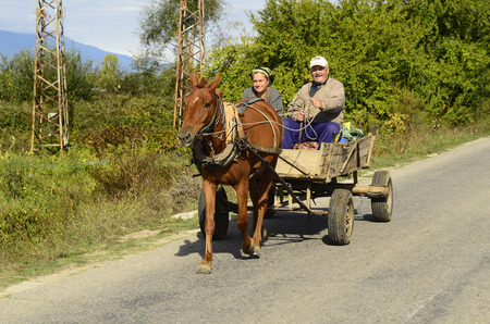 mode transport: Dabniza, Bulgaria - October 2nd 2013: Unidentified friendly looking couple of peasants on horse cart, an usual mode of transport in rural areas near the Greek border Editorial