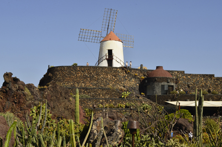 manrique: Guatiza, Spain - January 19th 2012: tourists visite the Jardin de Cactus with old windmill,the garden is designed by Cesar Manrique the most importand artist in Lanzarote Editorial