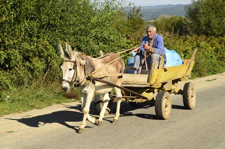 Blatzka, Bulgarije, niet-geïdentificeerde boer op ezelskar, een typisch voertuig in landelijke gebieden in Bulgarije Redactioneel