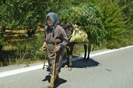 laden: Mochos, Greece - May 23rd 2014: Unidentified friendly old woman with her donkey fully laden with greens