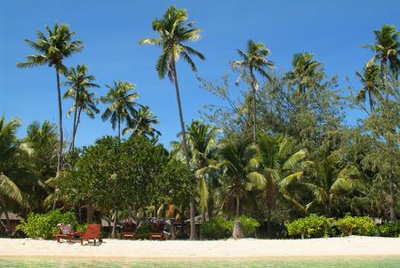Fiji, Plantation Island Resort Stock Photo