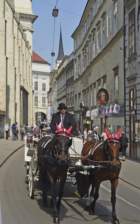 horse drawn: Vienna, Austria - April 24th 2011: unidentified people making sightseeing in one of the traditional horse drawn vehicles named Fiaker