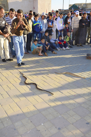 charmer: Meknes, Morocco - November 19th 2014: Unidentified snake charmer performed on place el-Hedim, a traditional kind of street artist