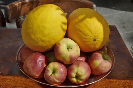 Spain, Canary Island, Fuerteventura, plate with different fruits