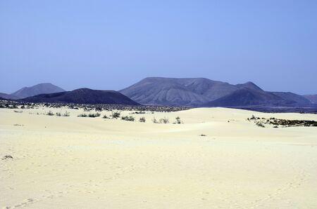 Spain, Canary Island, Fuerteventura, nature park El Jable