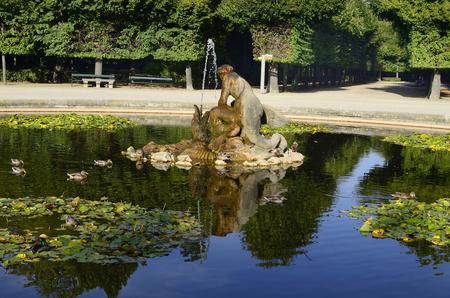 schoenbrunn: Austria, pond with fountain and wild ducks in park of Schoenbrunn, a Unesco World Heritage site