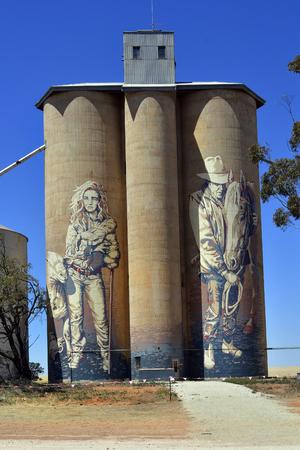 Hume のハイウェーのグイド ・ ヴァン ・ ヘルテン アーティストから Rupanyup は、VIC、オーストラリア - 2017 年 11 月 8 日: 塗られたサイロ