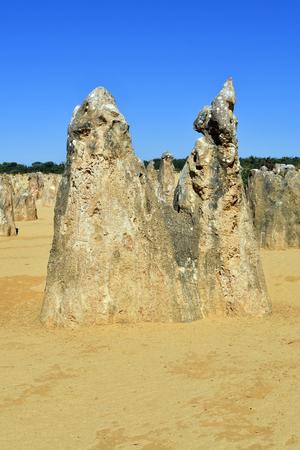 Australia, WA, The Pinnacles in Nambung National Park, preferred tourist attraction and natural landmark