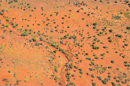 Australia, NT, aerial view from dried up river bed in Simpson Desert