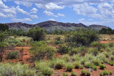 Australia, NT, pasture along McDonnell range near Alice Springs Stock Photo