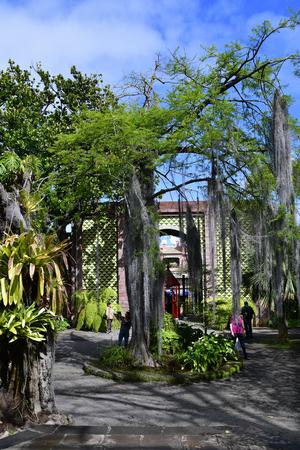 Tenerife, Canary Islands, Spain - April 12, 2018: Unidentified people visit the botanical garden of Puerto de la Cruz Editorial