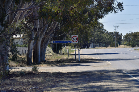 Australia, eucalyptus trees and direction sign to camping ground on Hume highway