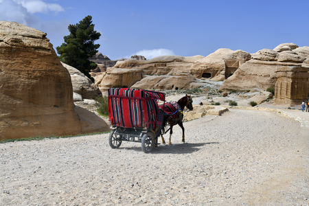 Jordan, horse carriage in Bab el-Siq, the entrance to ancient Petra, a Unesco World Heritage site