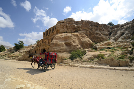 Jordan, horse carriage on road to ancient Petra, preferred mode of transport to the UNESCO world heritage site Editorial