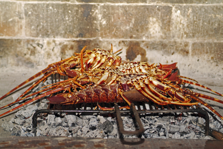Croatia, rock lobster grilled on open fire
