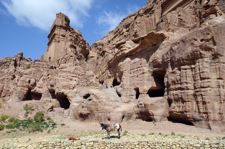 Jordan, donkey and impressive monuments in ancient Petra, preferred travel destination and Unesco World Heritage site in Middle East Standard-Bild - 120522886