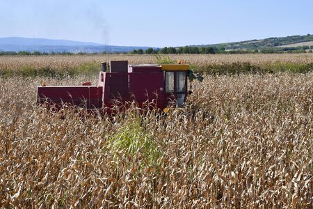 Hungary, old corn harvester in field