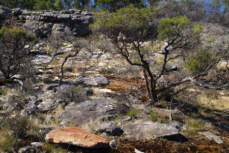 Australia, natural landscape in Grampians National Park, Victoria 版權商用圖片