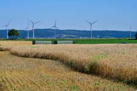 Austria, grain harvest of a wheat field and wind turbines behind in Lower Austria