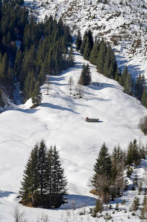 Austria, winter in Tyrol, ski tracks through fresh snow