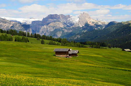 Italy, South Tyrol, Alpe di Suisi, homestead and dolomites