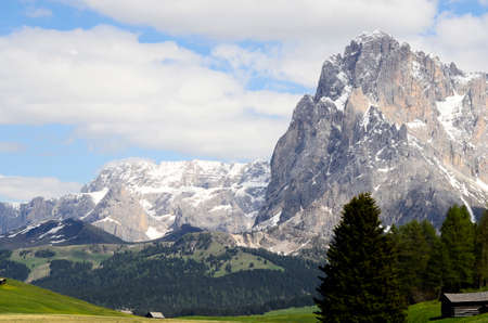 Italy, South Tyrol, Alpe di Suisi, dolomites 写真素材