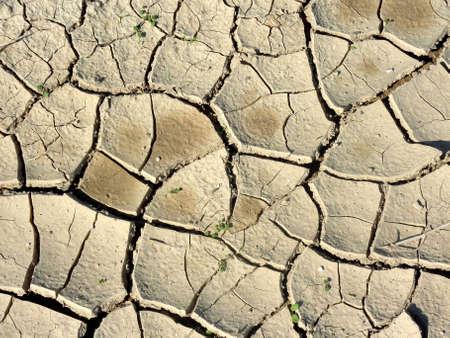 negev: dry ground in Negev desert, Israel