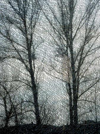splintered: Tree behind a splintered window