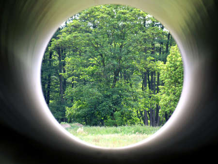 Forest seen through a tube Stock Photo - 7260039