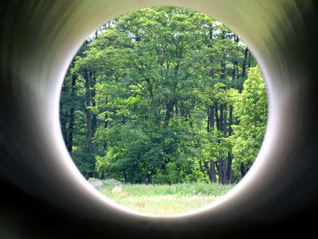 Forest seen through a tube