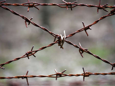 demarcation: old rusty barbed wire Stock Photo