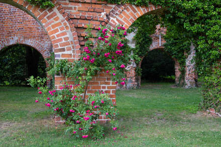 Himmelpfort; Brandenburg; Furstenberg; Oberhavel; Uckermark - relicts of old monastery