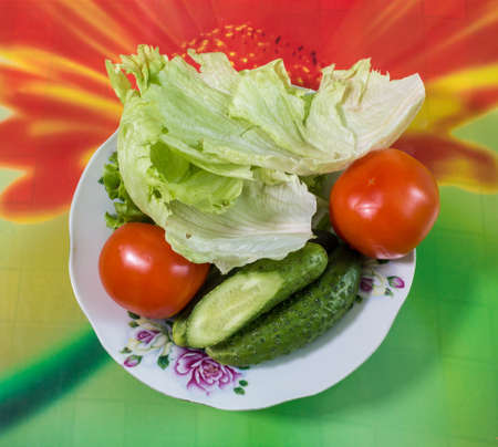 Colorful fresh group of vegetables for a balanced diet on colorful background.