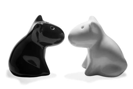 White and black, salt and pepper shaker on a white background