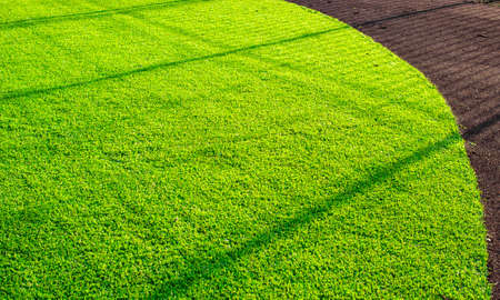 Artificial grass playground and a red running track of Rubber crumb